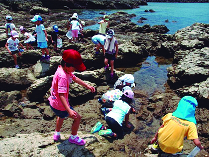 【★はたの夏休み★】海辺のいきもの探検隊